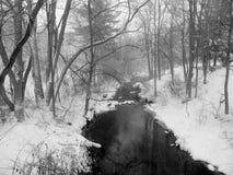 Pięć mil zimy Rzeczna scena Zdjęcie Royalty Free