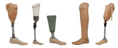 pięć noga protetyczna Zdjęcie Stock