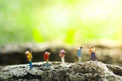 Pięć podróżników trekking w dżungli na greenery zamazywali tło obrazy royalty free