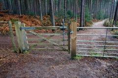 Pięć Prętowa drewniana brama z dźwigniowym mechanizmem w sosnowym lesie, prowadzenie obrazy stock