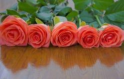 pięć róże Zdjęcie Royalty Free