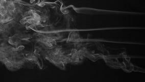 Pięć strumień bielu dymu kręcenie w dym chucha na czarnym tle zdjęcie wideo