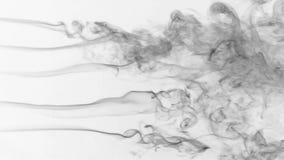 Pięć strumień czerń dymu kręcenie w dym chucha na białym tle zbiory wideo