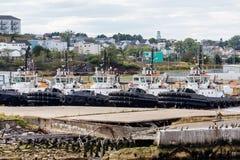 Pięć Tugboats w schronieniu Fotografia Royalty Free