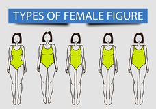 Pięć typ żeńskie postacie, wektorowy wizerunek ilustracja wektor
