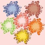 Pięć wielo- barwionych wzorów kwiaty royalty ilustracja