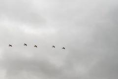 Pięć WW II samolotów lata w kreskowej formaci Zdjęcie Stock