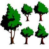 pięć zielonych drzew Royalty Ilustracja