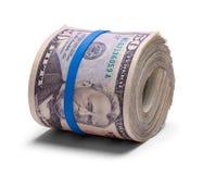 Pięćdziesiąt Dolarowa rolka zdjęcia royalty free