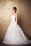 piękną panną młodą sukni weselne young Obraz Royalty Free