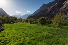 Piękna łąka, krajobraz od Karakorum autostrady, Gilgit Balti Zdjęcia Stock