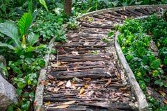 Piękna ścieżka przez lasu robić kolejowym krawatem Obraz Royalty Free