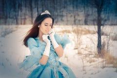 Piękna Śnieżna królowa w zima wystroju obrazy royalty free