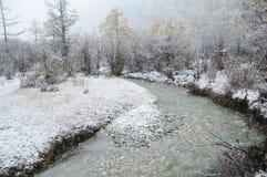 Piękna śnieżna scena Obrazy Royalty Free