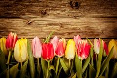 Piękna świeża tulipan granica na nieociosanym drewnie Zdjęcie Royalty Free