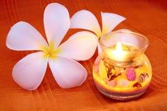 piękna świeczki frangipani Fotografia Royalty Free