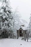 Piękna świerczyna i gazebo zakrywający z śniegiem obrazy royalty free