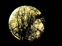 Piękna żniwo księżyc zdjęcie royalty free