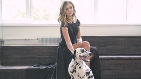 Piękna atrakcyjna dziewczyna w czarnej sukni z Dalmatyńskim psem pozuje dla fotografa w studiu zbiory wideo