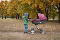 Piękna berbeć chłopiec bawić się z spacerowiczem Obrazy Stock