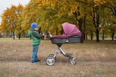 Piękna berbeć chłopiec bawić się z spacerowiczem Fotografia Stock