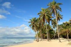 Piękna biała piasek plaża w wyspach karaibskich Obrazy Stock