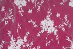 Piękna biel koronka kwitnie na różowym tle Zdjęcia Royalty Free