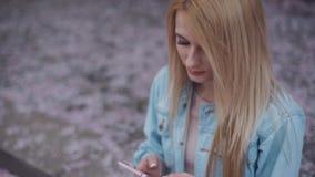 Piękna blondynki dziewczyna w cajg kurtce menchii sukni i stuka wiadomość w parku Spadać czereśniowy okwitnięcie na zbiory