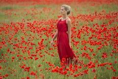 Piękna blondynki kobieta z czerwieni suknią po środku makowego pola, Obrazy Royalty Free