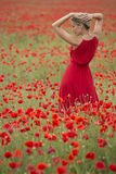 Piękna blondynki kobieta z czerwieni suknią po środku makowego pola, Obrazy Stock