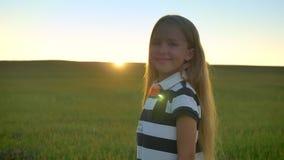 Piękna blondynki małej dziewczynki pozycja w pszenicznym polu i ono uśmiecha się przy kamerą, piękny widok podczas zmierzchu w tl zbiory