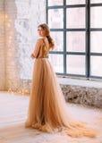 Piękna brunetki dziewczyna obraz royalty free