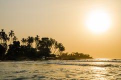 Piękna Bureh plaża podczas zmierzchu z sylwetkami palmy i surfingowowie, Sierra Leone, Afryka Fotografia Royalty Free