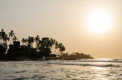 Piękna Bureh plaża podczas zmierzchu z sylwetkami palmy i surfingowowie, Sierra Leone, Afryka Zdjęcia Royalty Free