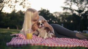 Piękna caucasian blondynki kobieta z jej psami w parku, zrelaksowanym na zielonej trawie na ściółce - pieści i cuddling ona zbiory wideo