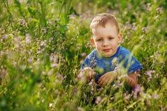 Piękna chłopiec chuje w wysokim trawy kucaniu Zdjęcie Royalty Free