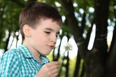 Piękna chłopiec z dandelion Zdjęcie Royalty Free