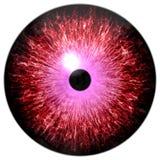 Piękna czerwień i purpurowa round 3d Halloween gałka oczna zdjęcie stock