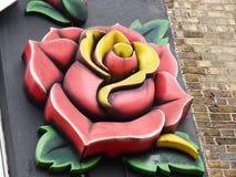Piękna Czerwona kolor żółty róża na Czarnej ścianie zdjęcie royalty free