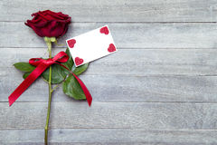 piękna, czerwona róża Obrazy Royalty Free