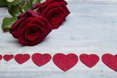 piękna, czerwona róża Fotografia Stock