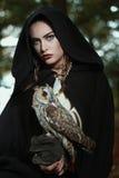 Piękna dama sowy zdjęcie stock