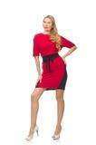 Piękna dama w czerwonej czerni sukni odizolowywającej dalej Zdjęcia Royalty Free