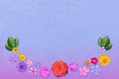 Piękna dekoracja kwiatów rama z pustym w centrum na błękitnym ciężkim rzemiennym tle Kwiecisty skład wiosna fl lub lato Zdjęcie Royalty Free