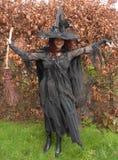 Piękna dojrzała brunetki czarownica Zdjęcie Royalty Free