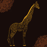 Piękna dorosła żyrafa szczotkarski węgiel drzewny rysunek rysujący ręki ilustracyjny ilustrator jak spojrzenie robi pastelowi tra Fotografia Stock
