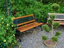 Piękna drewniana ławka w ogródzie fotografia royalty free