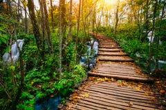 Piękna drewnianego mosta droga przemian w głębokim lesie nad turkusem barwił wodną zatoczkę w Plitvice, Chorwacja, UNESCO obrazy royalty free