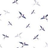 Piękna dymówka na białym tle beak dekoracyjnego latającego ilustracyjnego wizerunek swój papierowa kawałka dymówki akwarela Wiosn Obrazy Stock