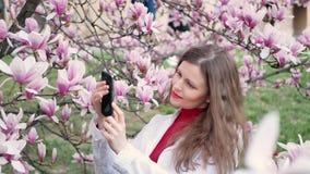 Piękna dziewczyna bierze fotografie magnolii menchii okwitnięcia wiosny drzewni kwiaty na smartphone zdjęcie wideo